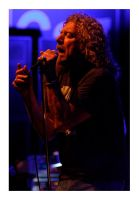 robert plant by cadrage