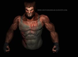 wolverine wip2 by marmoto