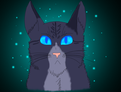 Jayfeather by DemonousNight