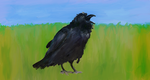 Crow by flyinghitcher