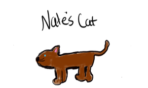 Nate's Amazing Cat by trujayy