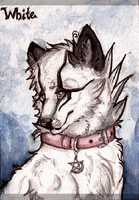 White ACEO by teawithblood