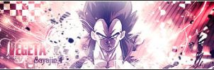 Sign : Vegeta by chouk57