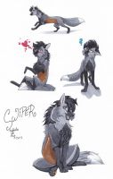 Swiper Sketches by Rabbiata