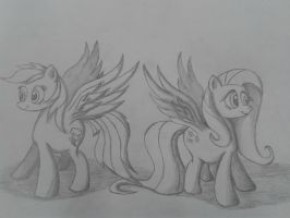 ponies with wings *Yay* by beginerbrony
