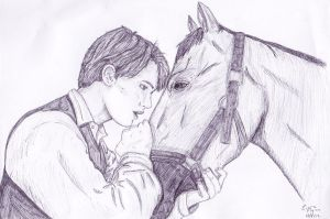 War Horse by The-Girl-Who-Waited