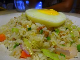 Classic Plate of fried rice by elloslai