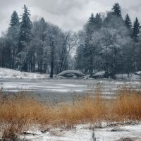 Colour of winter by xrust