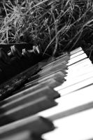 The Abandoned Piano II. by Alonir