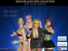 Dead or Alive Pose Collection - Stay Down edition by Rehabhardcore