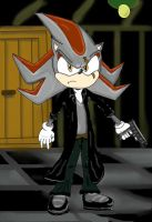 darkness the hedgehog by caracashi