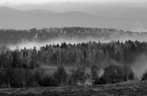 The fog lifted by Kellerfee