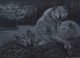 Wolves on the rocks by cokeglass