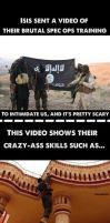 SURRENDER TO ISIS, THEY ARE SO TERRIFYING by NotAtAllSuspicious