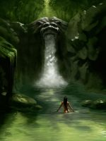 Lion Falls by PVproject