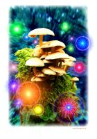 Mushroom lights by Ezeg