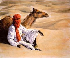 in the desert by magP