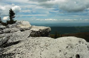 View From Bear Rock by TimLaSure