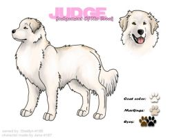 Great Pyrenees - ref sheet by never-endingDreams