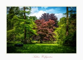 Schloss Wolfsgarten V by calimer00