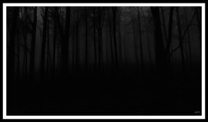 Dark forest by NYX-AIM