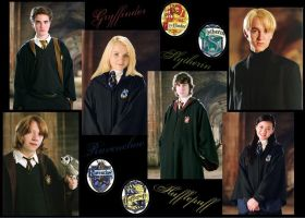 Hogwarts Houses Represent- HP by Alwaysss-Sslytherin