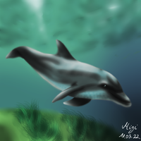 Dolphin by Migi47