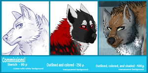 COMMISSIONS! (RESERVE A SLOT FOR 2014) by Sector-C13