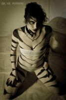 Tiger Play - EAP 14 by ElykAerPhotography