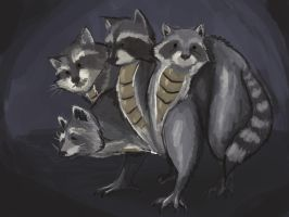 Oct2-Quadracoon by shelldragon