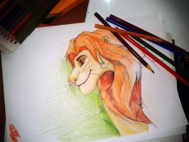 simba by JonyRichardson