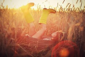 Sunlight by elsson