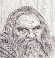 Gimli by LoonaLucy
