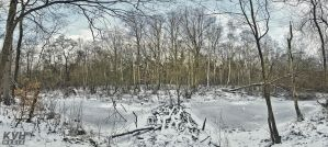 Pond - HDR Pano by theKovah
