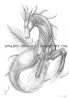 Hippocampus :pencil: by Red-Sinistra