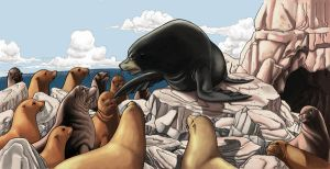 Silo_the Sea Lion_p0607 by paragraphworld