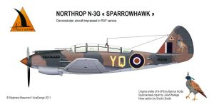 Northrop N-3G 'Sparrowhawk' 1940 fighter by Bispro