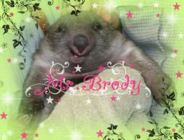 Mr. brody by LouBerry