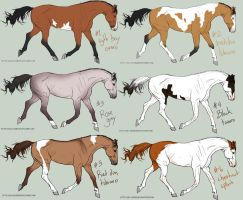 Horse Sale 4! ALL SOLD by Whiteout-Kennels