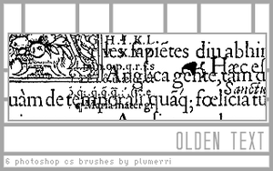 6 Olden Text Brushes by plumerri