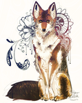 Coyote by Lynndoodles