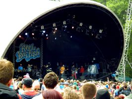 kendal calling 2014 26 reel big fish by harrietbaxter