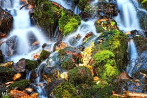 Moss on the Rocks Water on Top by mjohanson