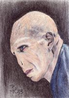 Lord Voldemort by LoonaLucy