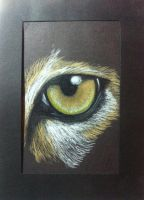 Animal Eye by Autumn-Aries