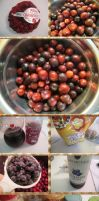 Cranberry Sauce Muffins by Windthin