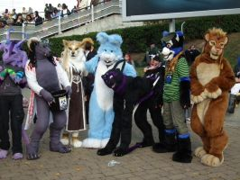 The mcm fursuit meet by ThoronWildCosplay