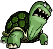 Angry Turtle by Braddock