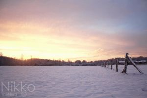 Snowy sundown. by NikolasBrummer