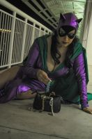 Catwoman - Master Thief by seethroughcrew